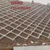 质量可靠网格护坡模具(高速网格护坡模具价格)